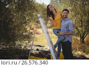 Купить «Portrait of smiling couple with ladder at olive farm», фото № 26576340, снято 22 марта 2017 г. (c) Wavebreak Media / Фотобанк Лори