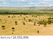 Купить «maasai mara national reserve savanna at africa», фото № 26592896, снято 21 февраля 2017 г. (c) Syda Productions / Фотобанк Лори
