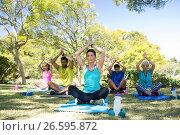Купить «Group of people performing yoga in the park», фото № 26595872, снято 2 марта 2017 г. (c) Wavebreak Media / Фотобанк Лори