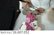 Купить «Bride and groom cutting wedding cake», видеоролик № 26607052, снято 14 мая 2017 г. (c) Алексей Макаров / Фотобанк Лори