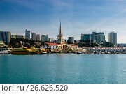 Купить «Сочи, морской вокзал и акватория пассажирского порта», фото № 26626520, снято 21 января 2020 г. (c) glokaya_kuzdra / Фотобанк Лори