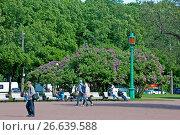 Купить «Люди отдыхают на скамейках на Марсовом поле. Санкт-Петербург», фото № 26639588, снято 22 июня 2017 г. (c) Румянцева Наталия / Фотобанк Лори