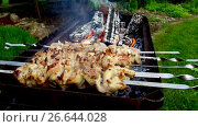 Купить «meat on skewers and firewood in brazier outdoors», видеоролик № 26644028, снято 24 июня 2017 г. (c) Syda Productions / Фотобанк Лори