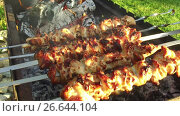 Купить «meat on skewers and firewood in brazier outdoors», видеоролик № 26644104, снято 25 июня 2017 г. (c) Syda Productions / Фотобанк Лори