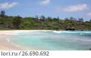 Купить «Died tree on sandy beach at Seychelles», видеоролик № 26690692, снято 31 октября 2013 г. (c) Mikhail Starodubov / Фотобанк Лори