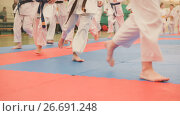 Купить «Group of karate sportsmen teenagers in kimono runs on tatami in the gym», фото № 26691248, снято 22 мая 2019 г. (c) Константин Шишкин / Фотобанк Лори