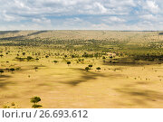 maasai mara national reserve savanna at africa (2017 год). Стоковое фото, фотограф Syda Productions / Фотобанк Лори