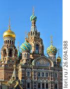 Купить «Купола православного собора Спас-на-Крови освещенные солнцем», фото № 26694988, снято 16 июня 2017 г. (c) Максим Мицун / Фотобанк Лори