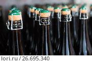 Купить «Wine bottles on shelf», фото № 26695340, снято 10 ноября 2016 г. (c) Яков Филимонов / Фотобанк Лори