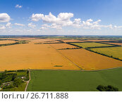 Купить «Beautiful yellow fields of ripe wheat in central Russia», фото № 26711888, снято 18 июля 2017 г. (c) Володина Ольга / Фотобанк Лори