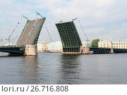 Купить «Разведенный Дворцовый мост. Санкт-Петербург», эксклюзивное фото № 26716808, снято 28 июля 2017 г. (c) Александр Щепин / Фотобанк Лори