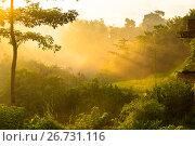 Sunrise over jungle. Стоковое фото, фотограф Никита Буйда / Фотобанк Лори