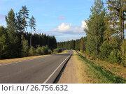 Купить «Асфальтированная дорога на фоне зеленых деревьев и голубого ясного неба - вид с обочины», фото № 26756632, снято 27 августа 2015 г. (c) Илья Илмарин / Фотобанк Лори