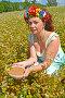 Женщина средних лет с венком на голове держит миску с гречневой крупой в поле цветущей гречихи, фото № 26762520, снято 29 июля 2017 г. (c) Ирина Борсученко / Фотобанк Лори