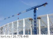 Купить «Башенный кран на строительстве стадиона. Нижний Новгород», фото № 26778448, снято 20 августа 2017 г. (c) Александр Романов / Фотобанк Лори