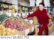 Купить «satisfied young woman choosing seasonal vegetables in farm store», фото № 26802752, снято 1 марта 2017 г. (c) Яков Филимонов / Фотобанк Лори