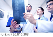 Купить «group of medics with spine x-ray scan at hospital», фото № 26816308, снято 3 декабря 2015 г. (c) Syda Productions / Фотобанк Лори