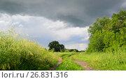 Купить «Countryside landscape with road before the storm. Russia», видеоролик № 26831316, снято 10 июля 2017 г. (c) Володина Ольга / Фотобанк Лори