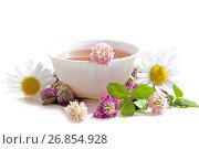 Купить «Травяной напиток с цветами клевера и ромашки», фото № 26854928, снято 12 июля 2017 г. (c) Татьяна Белова / Фотобанк Лори