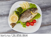 Fresh raw Dorado fish with rosemary, garlic, tomatoes, pepper and lemon on a gray board. Selective focus. Стоковое фото, фотограф Алексей Спирин / Фотобанк Лори