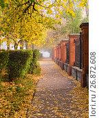 Купить «Городская аллея осенним утром», фото № 26872608, снято 30 сентября 2007 г. (c) Игорь Камаев / Фотобанк Лори