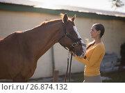 Купить «Female jockey with horse at barn», фото № 26874132, снято 3 мая 2017 г. (c) Wavebreak Media / Фотобанк Лори