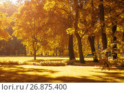 Купить «Autumn landscape, autumn park in with golden autumn trees in sunny weather», фото № 26875400, снято 15 августа 2017 г. (c) Зезелина Марина / Фотобанк Лори