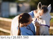 Купить «Close up of female vet examining horse eye», фото № 26881560, снято 3 мая 2017 г. (c) Wavebreak Media / Фотобанк Лори