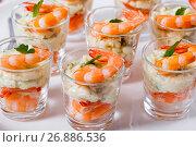 Купить «individual Cocktail Shrimp Shooters with delicious homemade aioli spicy sauce», фото № 26886536, снято 25 февраля 2020 г. (c) Oksana Zh / Фотобанк Лори