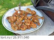Купить «Шашлык из курицы на тарелке», эксклюзивное фото № 26911040, снято 19 августа 2017 г. (c) Юрий Морозов / Фотобанк Лори