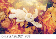 Купить «toy rabbit in fallen autumn leaves», фото № 26921768, снято 12 октября 2016 г. (c) Syda Productions / Фотобанк Лори