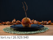 Купить «Close up of caramelized apple served in plate», фото № 26929940, снято 11 апреля 2017 г. (c) Wavebreak Media / Фотобанк Лори