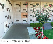 Купить «A general view of Marilyn Monroe's resting place at Westwood Village Memorial Park Cemetery, Los Angeles Marilyn Monroe's enduring stardom Words by Mark...», фото № 26932368, снято 26 мая 2016 г. (c) age Fotostock / Фотобанк Лори