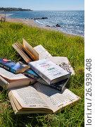Купить «Lots of books at the beach. Costa del Sol, Málaga province. Andalusia, Southern Spain Europe.», фото № 26939408, снято 7 июня 2017 г. (c) age Fotostock / Фотобанк Лори