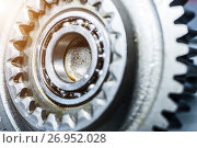 Купить «Steel gears and rolling bearing.», фото № 26952028, снято 23 августа 2017 г. (c) Андрей Радченко / Фотобанк Лори