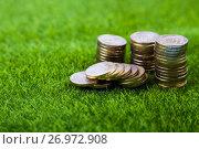 Купить «Coins on grass.», фото № 26972908, снято 3 сентября 2017 г. (c) Елена Блохина / Фотобанк Лори