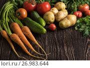 Купить «freshly grown raw vegetables», фото № 26983644, снято 17 июля 2016 г. (c) Jan Jack Russo Media / Фотобанк Лори