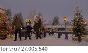 Купить «Mom, dad and son in the park decorated with Christmas lights», видеоролик № 27005540, снято 16 июля 2017 г. (c) Данил Руденко / Фотобанк Лори
