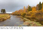 Купить «Осенний пейзаж с желтым лесом у реки», фото № 27012572, снято 25 сентября 2017 г. (c) Виктория Катьянова / Фотобанк Лори