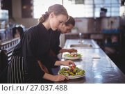 Купить «Side view of young wait staff preparing fresh salad plates while standing in commercial kitchen», фото № 27037488, снято 21 мая 2017 г. (c) Wavebreak Media / Фотобанк Лори