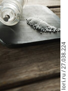 Купить «Salt shaker and salt on black slate plate», фото № 27038224, снято 5 июня 2017 г. (c) Wavebreak Media / Фотобанк Лори