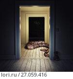 Купить «Snake in the room», фото № 27059416, снято 23 января 2019 г. (c) Виктор Застольский / Фотобанк Лори