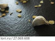 Купить «Close-up of garlic», фото № 27069608, снято 5 июня 2017 г. (c) Wavebreak Media / Фотобанк Лори