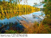 Купить «The bright sun highlighted the yellow trees by the lake . Autumn landscape», фото № 27074616, снято 6 октября 2017 г. (c) Алексей Маринченко / Фотобанк Лори