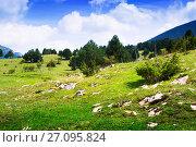 Купить «Summer view of mountain highland meadow», фото № 27095824, снято 19 октября 2018 г. (c) Яков Филимонов / Фотобанк Лори