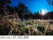 Купить «Утреннее солнце встаёт над лесом и травой покрытой инеем. Сибирь, Россия», фото № 27102448, снято 8 октября 2017 г. (c) Евгений Мухортов / Фотобанк Лори