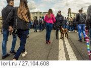 Купить «Полицейский с собакой обеспечивает безопасность на Тверской улице на день города 870 лет Москвы», фото № 27104608, снято 9 сентября 2017 г. (c) Эдуард Паравян / Фотобанк Лори