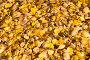 Желтые опавшие осенние листья, фото № 27112616, снято 19 октября 2017 г. (c) Дудакова / Фотобанк Лори