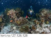 Купить «Female scuba diver swim near coral reef», фото № 27126128, снято 6 сентября 2017 г. (c) Некрасов Андрей / Фотобанк Лори