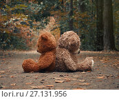 Купить «Teddy bears sit with their backs to each other. Autumn forest path. The concept of resentment, misunderstandings and conflict in relationships», фото № 27131956, снято 17 июля 2018 г. (c) Ирина Козорог / Фотобанк Лори